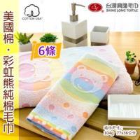 美國棉彩虹熊毛巾 (6條裝) 【台灣興隆毛巾製】親膚性佳
