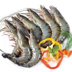 好神 極鮮生凍虎斑大草蝦40尾組