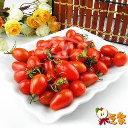 果之家 高雄美濃嚴選玉女小番茄3盒入(每盒1台斤)