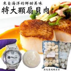 海肉管家-新鮮海味圓扇貝肉x1包(每包26-30入/約1000g±10%)