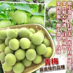 果物樂園-台灣南投信義鄉青梅(15斤±10%)