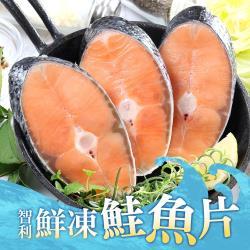 好食讚 鮮凍智利鮭魚5包 (1包250g±10%/2片裝)