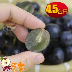 果之家 苗栗卓蘭特級巨峰葡萄4.5台斤裝
