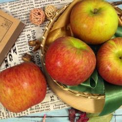 紐西蘭進口蘋果(4粒)(中顆)