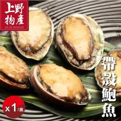 上野物產 厚實鮮嫩帶殼鮑魚   (1000g土10%/20顆/盒) x2盒