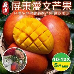 農民直配-屏東愛文芒果禮盒1盒(10-12入/約5斤±10%含盒重)