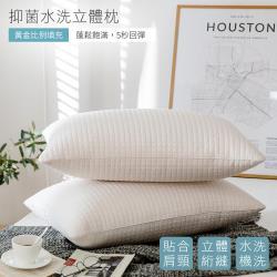 BELLE VIE 奈米可水洗Q彈抗菌枕 (45x75cm)