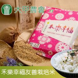 大甲農會 禾樂幸福-CNS二等 友善栽培米-2kg-包 (2包一組)
