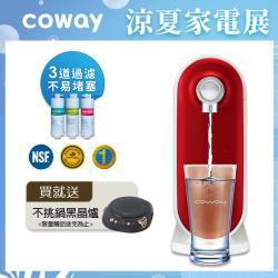登記送次氯酸水製造機★Coway奈米高效淨水器P-250N(DIY自裝組)-庫
