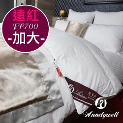 【雅帝格】買被送枕 專利遠紅外線90/10頂級冬季羽絨被 -雙人加大