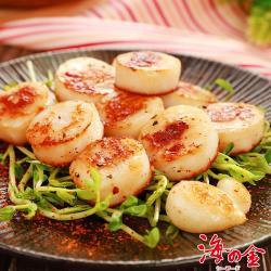 【海之金】超鮮甜扇貝肉16包組(300g/包)