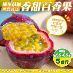 果農直配-埔里吊網香甜百香果1箱(每箱約55-65顆/約5斤±10%含箱重 )