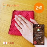 日本神樣 掃除之神 日製木質/大理石家具專用絨面極細柔毛清潔布-2條入