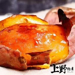 【上野物產】外銷日本 高級帶皮即食 冰嫩地瓜 (500g±10%/包)x10包