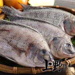 【上野物產】嚴選台灣鯛魚 (250g土10%/隻)x1隻