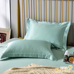 Betrise晨暮破曉 環保印染抗菌天絲素色歐式壓框薄枕套X2