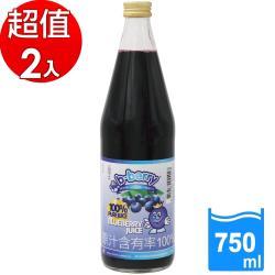 【碧貝瑞b-berry】荷蘭進口100%原汁頂級藍莓汁(750ml/瓶)x2瓶