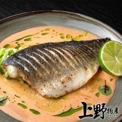 【上野物產】外銷日本 五星飯店選用 金牌鱸魚清肉(200-250g±10%/片) x10片