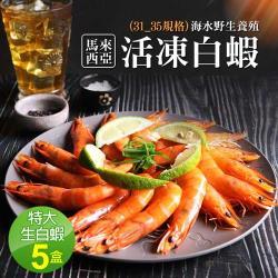 築地一番鮮-特大馬來海水養殖活凍31/35生白蝦5盒(600G/20±3尾)