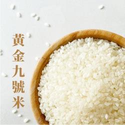 【西川米店】頂級黃金九號米(300g*10包)