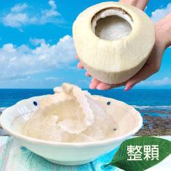 【遊食趣】泰香椰椰凍/椰汁寒天剉冰 X2顆(椰子/椰肉/果凍/水果/冰品)