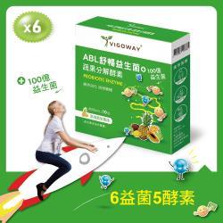 超值搶購↘ 超值六入組 Vigoway 威客維 ABL舒暢益生菌 蔬果分解酵素