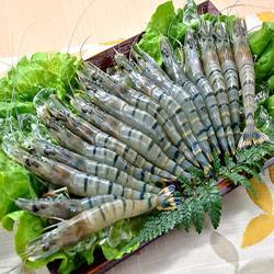 【食在好神】活凍超鮮優質草蝦(10隻/盒) x12盒