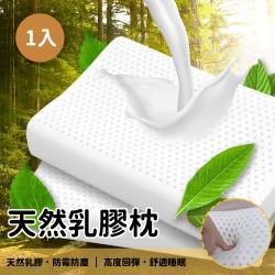 【本木】多奈 加強護頸基本型乳膠枕(1入)