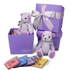 Diva Life 比利時巧克力片8片裝 禮物熊禮盒 雙包裝