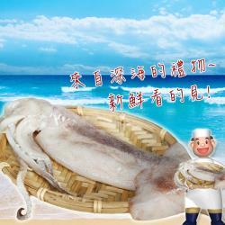 [賣魚的家]嚴選深海大魷魚 3包組(400g±3%/2尾/包)