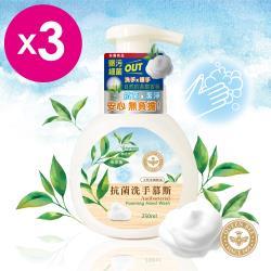 【QUEEN BEE 蜂王】茶樹抗菌洗手慕斯 3入組