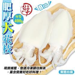 海肉管家-特級鮮Q甜肥厚大花枝(3隻/每隻約400g±10%)