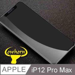iPhone 12 Pro Max 2.5D曲面滿版 9H防爆鋼化玻璃保護貼 黑色