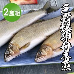 【海鮮王】極鮮活力母香魚*2盒組(1kg±10%/5隻/盒)