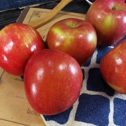 美國進口華盛頓富士蘋果(5粒)