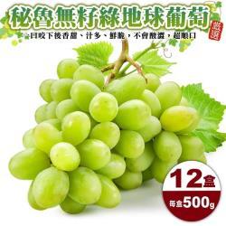 果物樂園-秘魯無籽綠地球葡萄(12盒/每盒500g±10%含盒重)