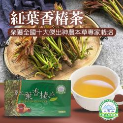 任-大雪山農場  紅葉香椿茶-3g-30包-盒  (1盒)