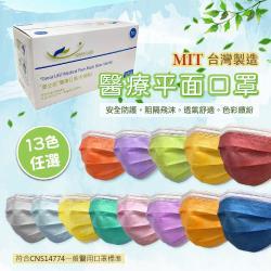 【豐生銳】成人醫療級雙鋼印平面口罩 台灣製(50片/盒) x12盒