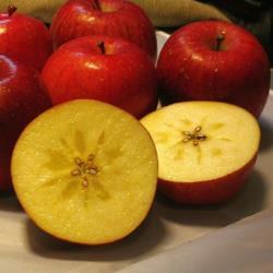 綠安生活 日本青森蜜蘋果6顆禮盒(1.8kg±10%/盒)