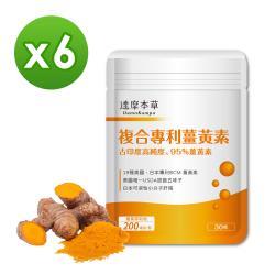 【達摩本草】古印度專利薑黃素五味子複方 x6包 (30粒/袋)