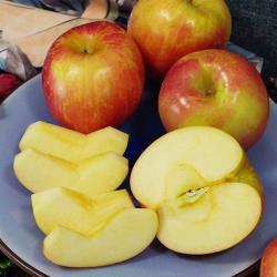 美國進口華盛頓富士蘋果(4粒)