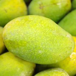 土芒果(600g±10%)
