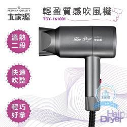 大家源 二段輕盈質感吹風機 TCY-161001