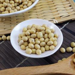 【熊媽媽】食品級特選非基改黃豆 500g±5%