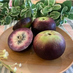 【永齡選物】夢幻紫牛奶果提盒(1.5kg/5入 )