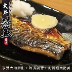 海肉管家-嚴選宜蘭XL薄鹽鯖魚(8片/每片約150g±10%)
