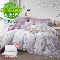 KOSNEY  雅絮  加大100%天絲TENCE六件式兩用被床罩組送飯店枕2入