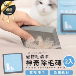 捕夢網-韓國熱銷 神奇除毛磚 2入組 寵物毛清潔 寵物毛清理海綿