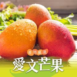 【愛上新鮮】產地嚴選愛文芒果2盒組(3台斤±5%/盒/約6~8顆)