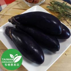 有機水滴茄(300g±10%)